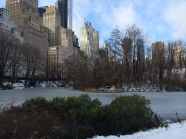 The day the pond in Central Park was frozen..