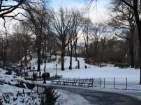 Central park - truly gorgeous - leaves or no leaves!
