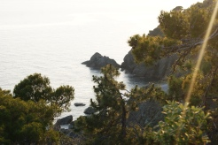 There is a view like this at almost every turn in Cinque Terre.