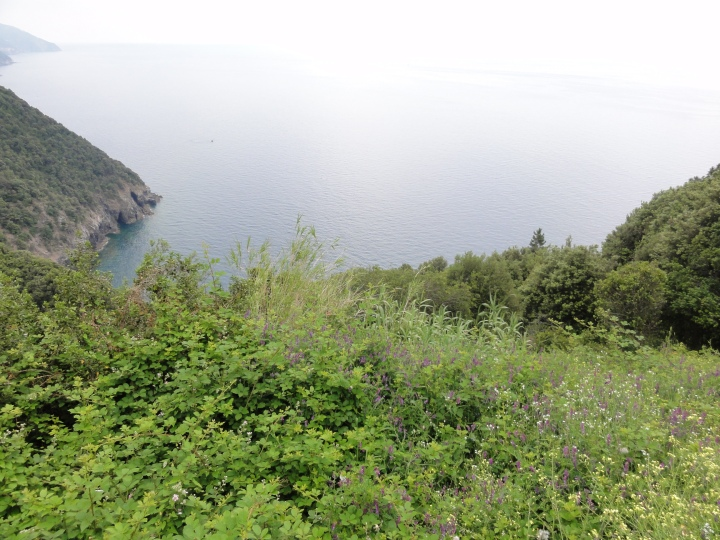If you had to choose one hike, choose this one - Monterosso to Vernazza.