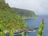 The winding drive along the road to Hana comes with gorgeous views.