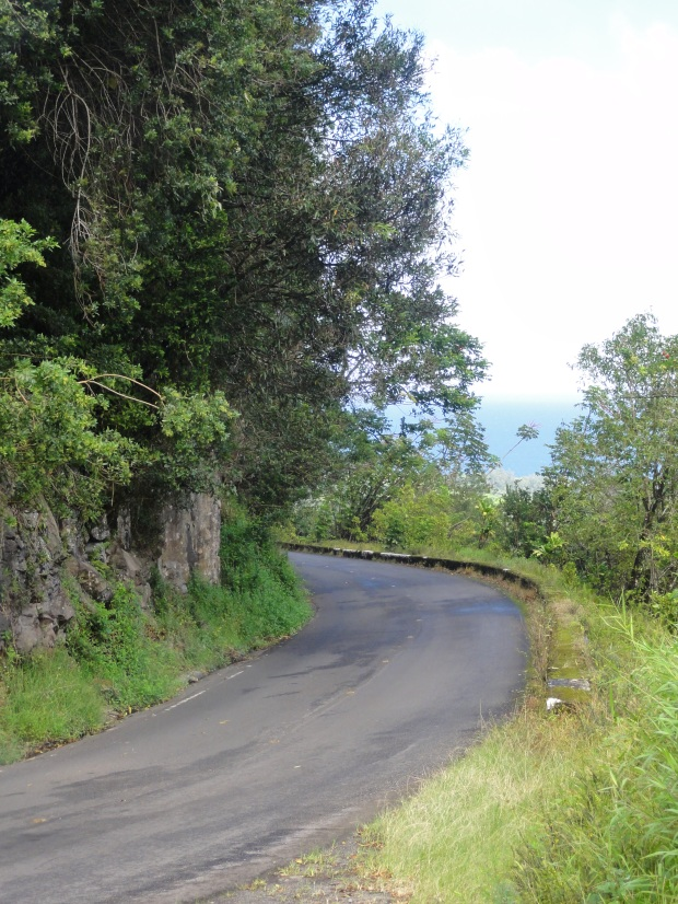 The winding road to Hana, Maui