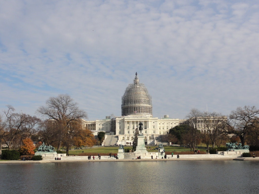 The US Capitol's dome resembles a bird's nest, while under restoration.